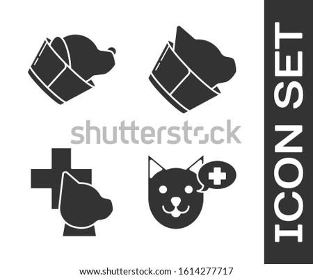 Set Veterinary clinic symbol, Veterinary clinic symbol, Veterinary clinic symbol and Veterinary clinic symbol icon. Vector