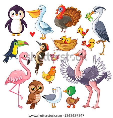 Set with birds. Vector illustration with animals in children's style. stock photo