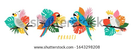 set with cute cartoon parrots