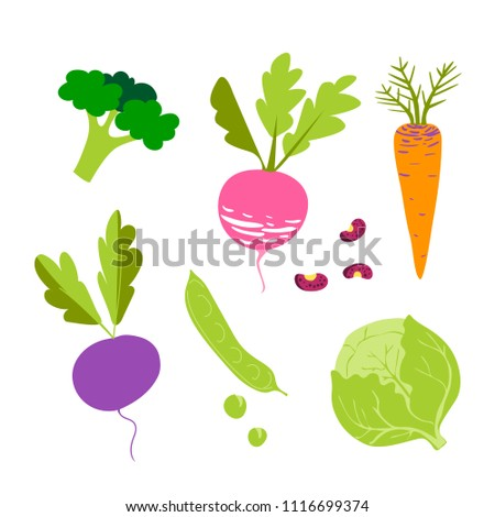 Set with cute colorful vegetables. Vegetables flat icons set: beet, carrot, cabbage, radish, eggplant, peas, beans, broccoli .