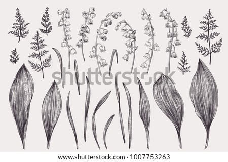set with flowers of a lily of