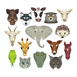 Set with heads of various wild and domestic animals