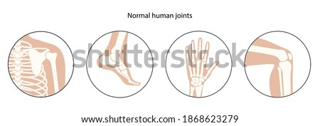 Set with human shoulder, knee, ankle and wrist icons. Normal joints and bones medical poster for clinic. Orthopedic or chiropractic treatment. Anatomical logo concept. Skeleton vector illustration.