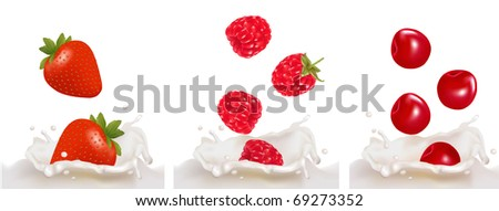 Set with red raspberry, strawberry and cherry fruits falling into the milk splash. Vector illustration