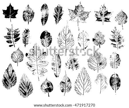 Set with stamp leaves. Objects isolated on white. Black and white. stock photo