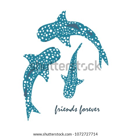 set with whale sharks and
