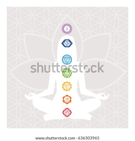 seven chakras  energy body and
