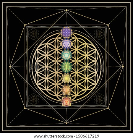 Seven chakras on the flower of life