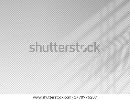 Shadow blinds. Light from window. Overlay effect. Shade jalousie transparent. Isolated background. Light on window blinds. Reflected shadow on wall. Realistic soft shade blind. Vertical mockup. Vector