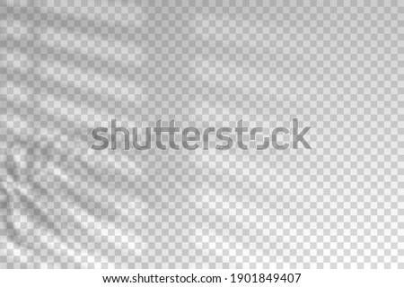 Shadow blinds. Light from window. Overlay effect. Shade jalousie transparent. Isolated background. Light window blinds. Reflected shadow on wall. Realistic soft shade blind. Horizontal mockup. Vector