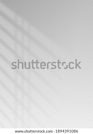 Shadow blinds. Sun light from window. Overlay effect. Shade jalousie transparent. Isolated background. Window blind. Reflection shadows on wall. Realistic soft shade. Vertical shading mockup. Vector Stockfoto ©