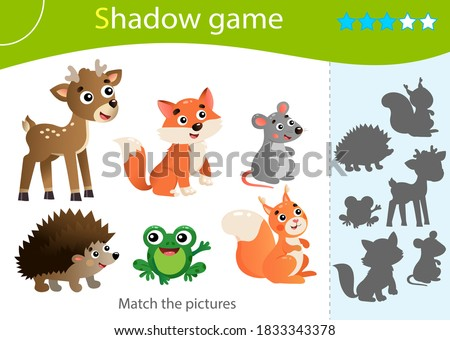shadow game for kids match the
