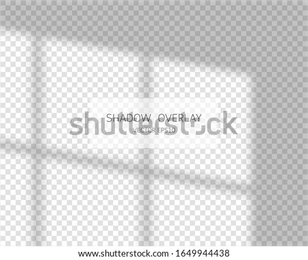 Shadow overlay effect. Natural shadows from window isolated on transparent background. Vector soft shadow and light overlay effect.