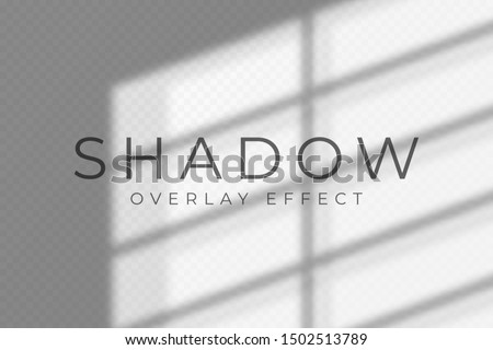 Shadow overlay effect. Transparent soft light and shadows from windows and jalouse. Mockup of transparent shadow overlay effect and natural lightning. Vector