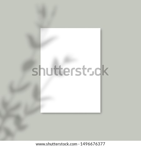 Shadow Overlay Plant Vector Mockup A4 Paper sheets. Shadows overlay effects Of A leaf on blue background in a modern minimalist style. For presentation Flyer, Poster, blank, logo, invitation