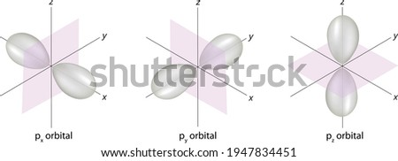 shapes of p orbitals on coordinate system, 3D design vector illustration, x y z axis Stok fotoğraf ©