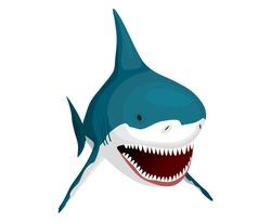 Shark. Big dangerous marine predator. Toothy swimming angry shark. Underwater character of sea animal. Vector illustration of Marine wildlife