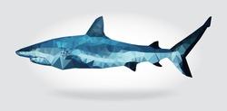 Shark body vector isolated, geometric modern illustration