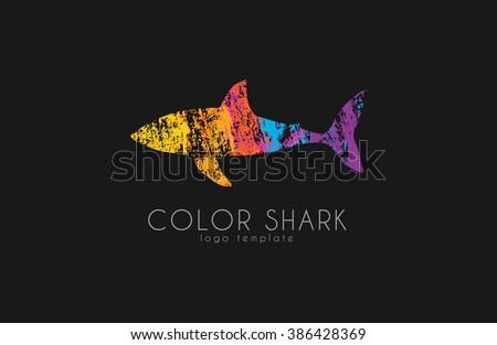 shark logo color shark logo