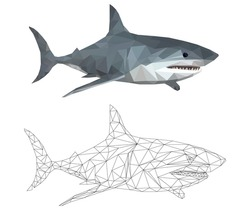 SHARK LOW POLY POLYGONAL, TRIANGLE , Predatory fish on white background, business concept, vector image.