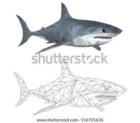 shark low poly polygonal