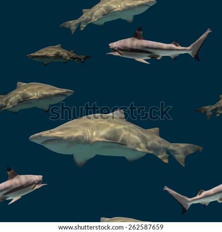 shark pattern sea pattern