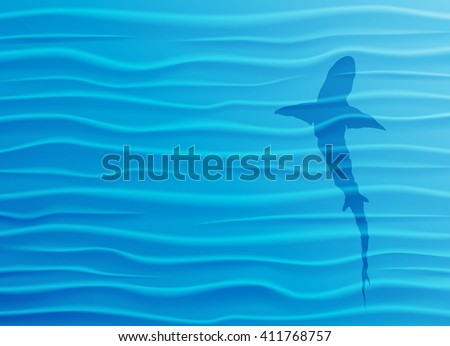 shark silhouette in blue water