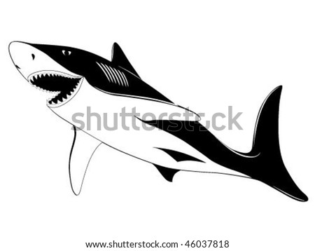 shark tattoo. stock vector : Shark, tattoo