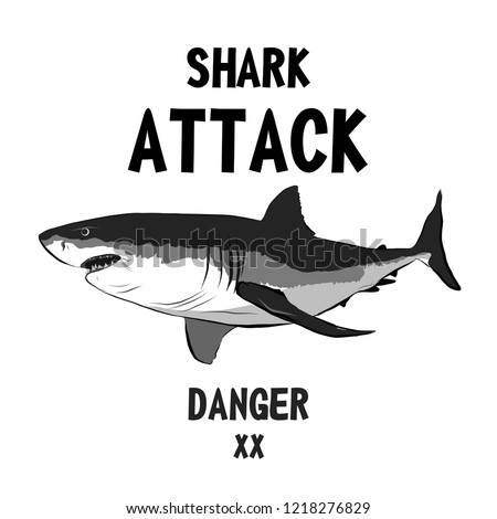 Shark vector for t shirt printing and pattern, Graphic tee and printed tee