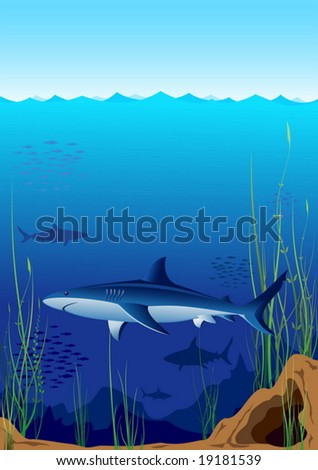 Sharks in the deep blue sea. Vector illustration.