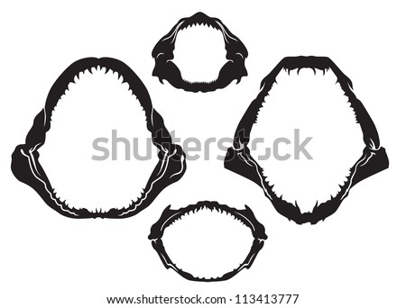 sharks jaws vector