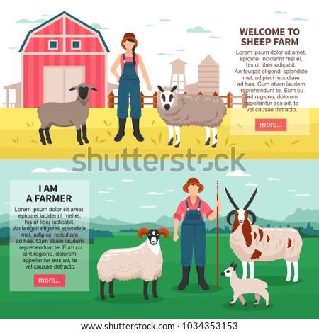 sheep breeding farm 2 flat