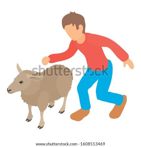 Sheep farming icon. Isometric illustration of sheep farming vector icon for web