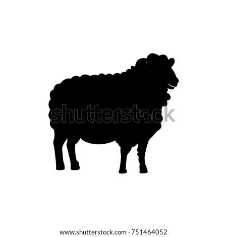 Sheep,icon vector illustration
