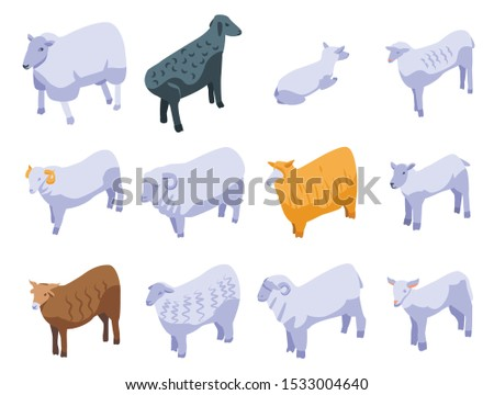 sheep icons set isometric set