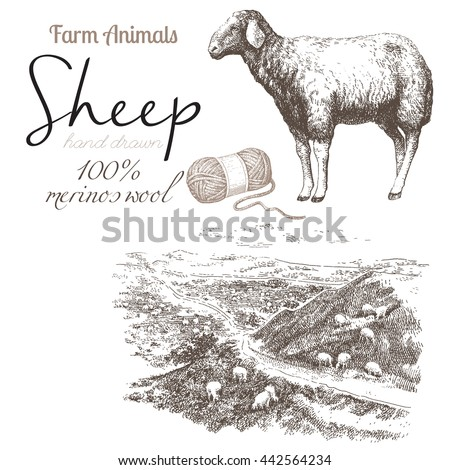 sheep 2 sheep breeding set of