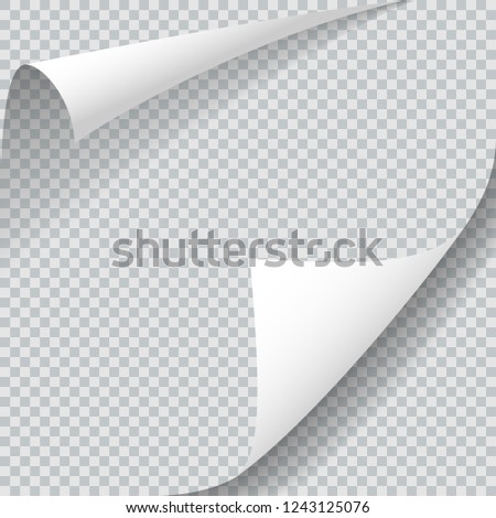 Sheet with two curled corners. Realistic shadows isolated on transparent background. Vector design illustration