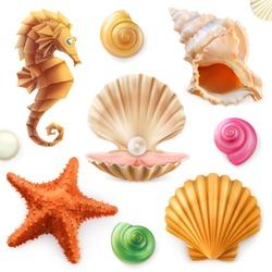 Shell, snail, mollusk, starfish, sea horse. 3d icon set