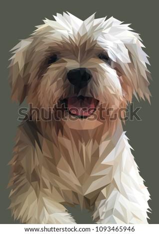 Shih Tzu illustration. Low poly dog vector. Maltese cross.
