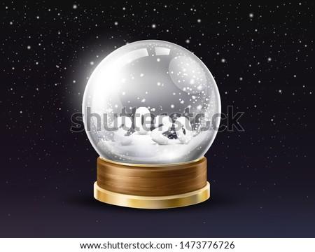 shining  glass snow globe with