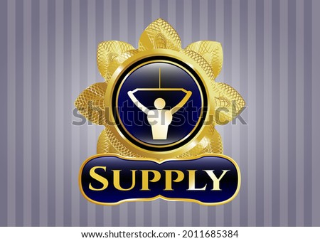 Shiny emblem with lat pull down, exercise icon and Supply text inside Foto stock ©
