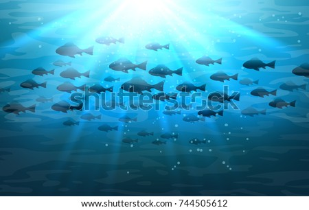 shoal of sea fish swimming