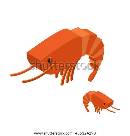 shrimp isometric on white