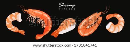 Shrimp prawn icons set. Boiled Shrimp drawing on a black background. Collection shrimp, shrimp without shell, meat, sushi. Realistic vector illustration Stockfoto ©