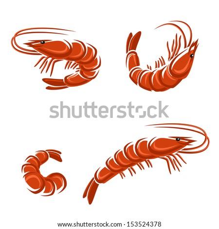 Shrimp Logo Vector Shrimp Set Vector