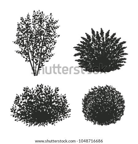 Shrubs silhouettes.Vector illustration.