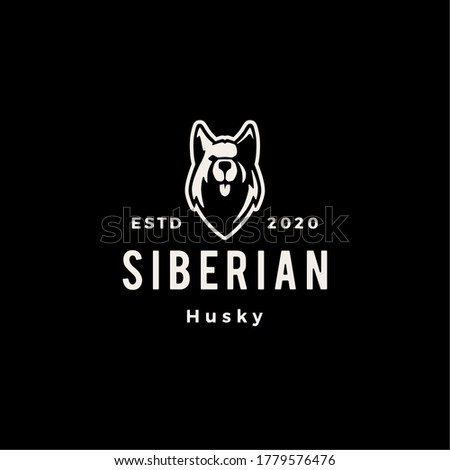 siberian husky dog hipster