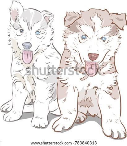 siberian husky dog puppy smiley