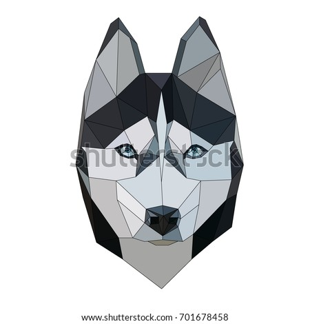 siberian husky polygonal