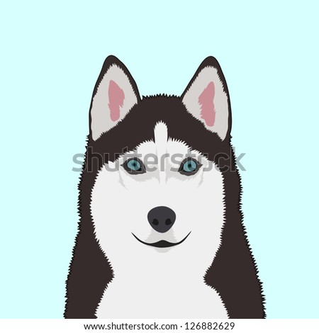 Siberian husky, The buddy dog